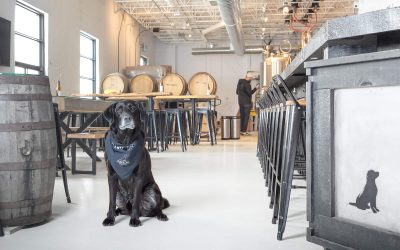 Black Lab Brewing